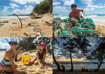 Beach Cleanup Whats New At Mbc